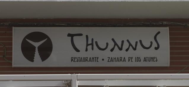 thunnus