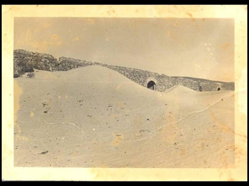 los arenales